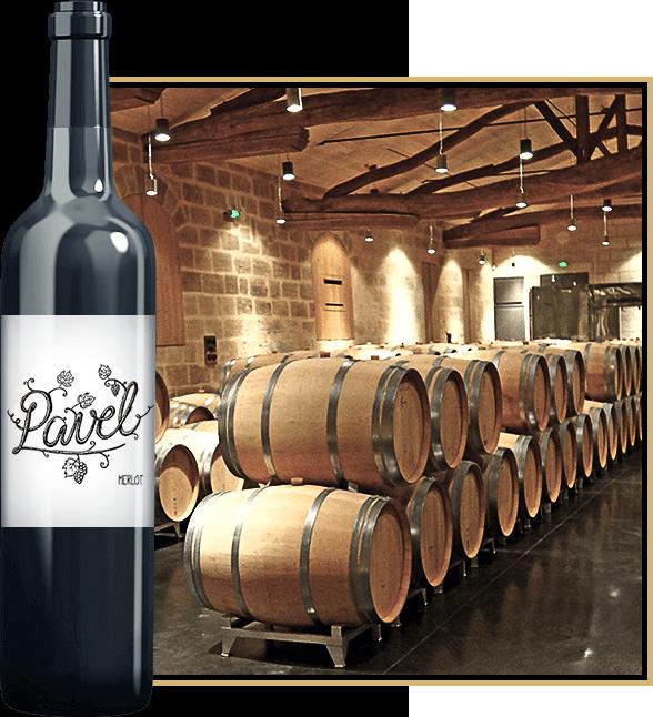 Producator vinuri merlot, shiraz, cupaj